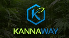 Medical Marijuana, Inc.'s Kannaway, LLC to Introduce New Kannaway Premium Hemp Oil