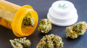 Pennsylvania Now Accepting Applications for Medical Marijuana Program