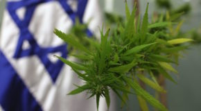 Israeli Government Votes to Decriminalize Recreational Marijuana Use