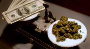 Friday Is the Most Popular Day of the Week to Buy Weed