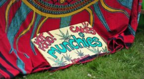 Cannabis Festival '420' Will Return to Manchester's Platt Fields Park This Year