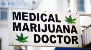 Legalization Of Cannabis Dramatically Cuts Opioid Abuse Rates