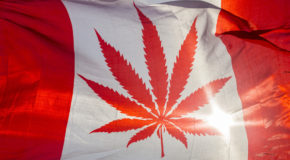 Canada Introduces Legislation to Allow Recreational Use of Marijuana
