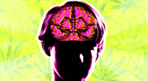 Kids Could Take Cannabidiol To Prevent Seizures