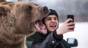 Ban Selfies! They Kill 800% More People Than Marijuana in the U.S.