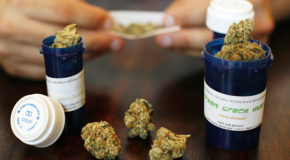 Medical Marijuana for New Mexico Opiate Addicts Rejected