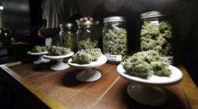 With Legal Marijuana, Fatal Car Crashes Haven't Increased