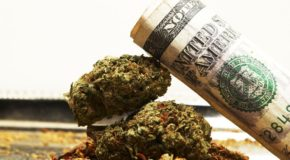 Recreational Cannabis Sales to Grow Faster Than Medical Cannabis Sales