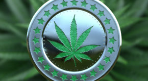 Cannabis and Cryptocurrency: The Time Is Now