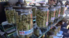 Constellation Brands Inc. Is Now Investing In Marijuana