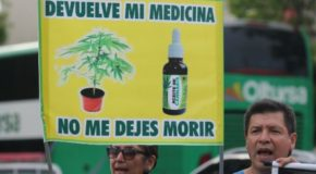 Peru Congress Passes Bill to Legalize Medical Marijuana