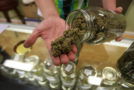 Medical Marijuana Is Now Legal in the UK