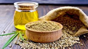 What is the Difference Between CBD Oil, Hemp Seed Oil, and Cannabis Oil?